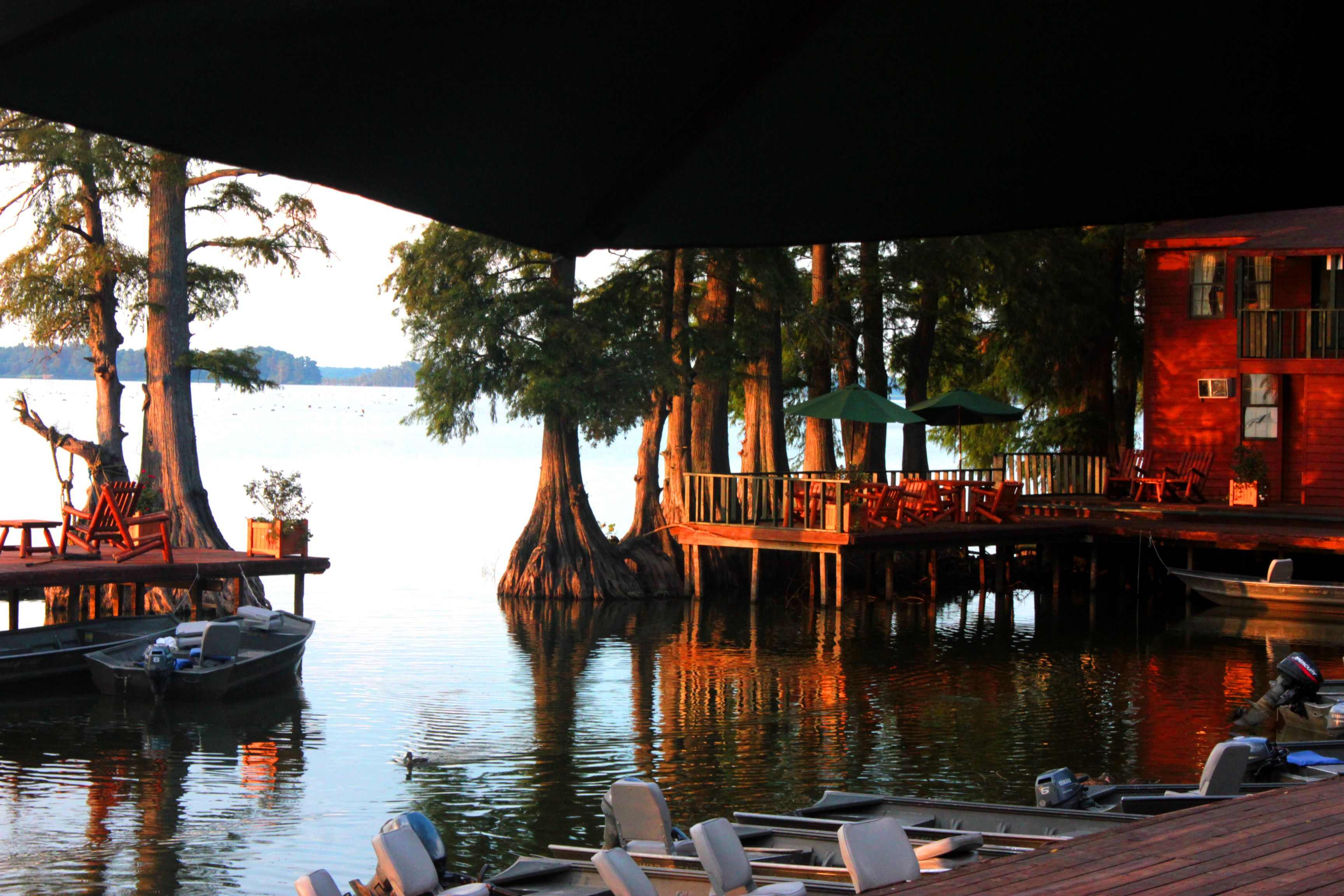 Blue Bank Resort in Reelfoot TN   My Photos   Scenery, Fish