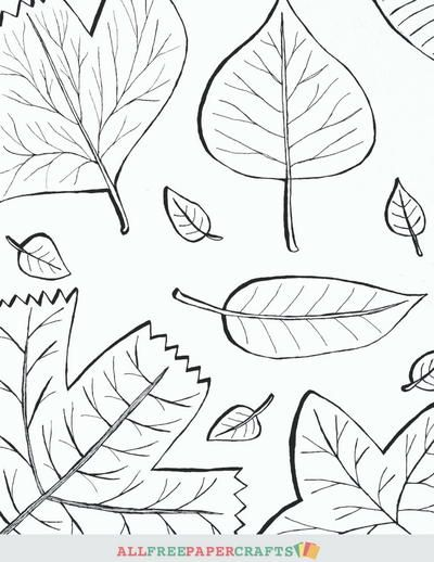 Cascading Fall Leaves Printable Coloring Pages is part of Turkey coloring pages, Printable coloring pages, Coloring pages, Printable coloring, Fall paper crafts, Thanksgiving paper - a> without ever doing the same color scheme  Use these fall coloring pages to create homemade cards, wall art, or just color them in for fun after work