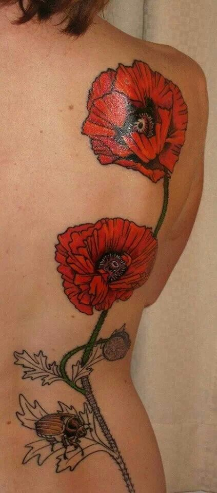 Gorgeous poppies i would never get anything this enormous but i poppy tattoo designs ever wondered what is the value of an easy poppy flower poppy tats really are a rarity and therefore are particularly mightylinksfo