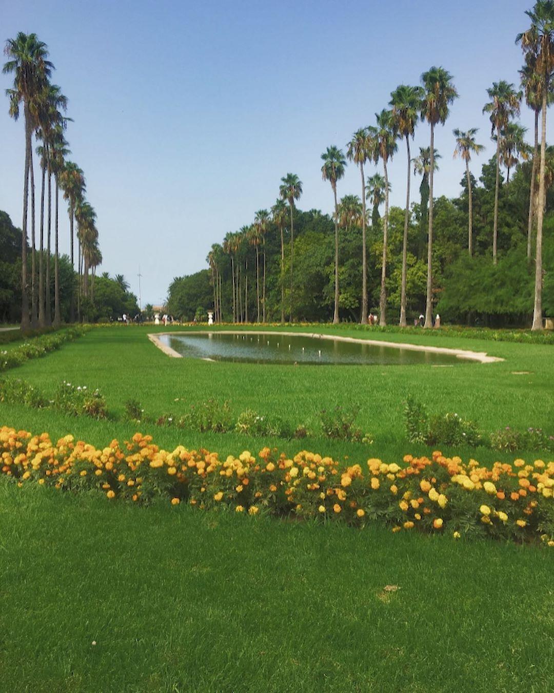 Le Jardin D Essai Du Hamma A Situe Dans Le Quartier Du Hamma A