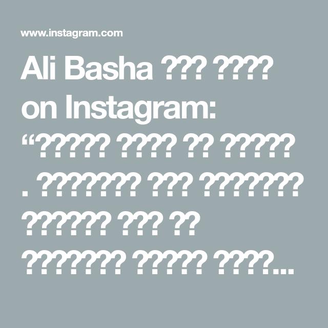 Ali Basha علي باشا On Instagram معصوب ملكي في البيت استخدمت خبز البراتا الجاهز الي من الفريزر وممكن تستخدموا خبز اي نوع خبز اسمر بس اهم شي Instagram Recipes