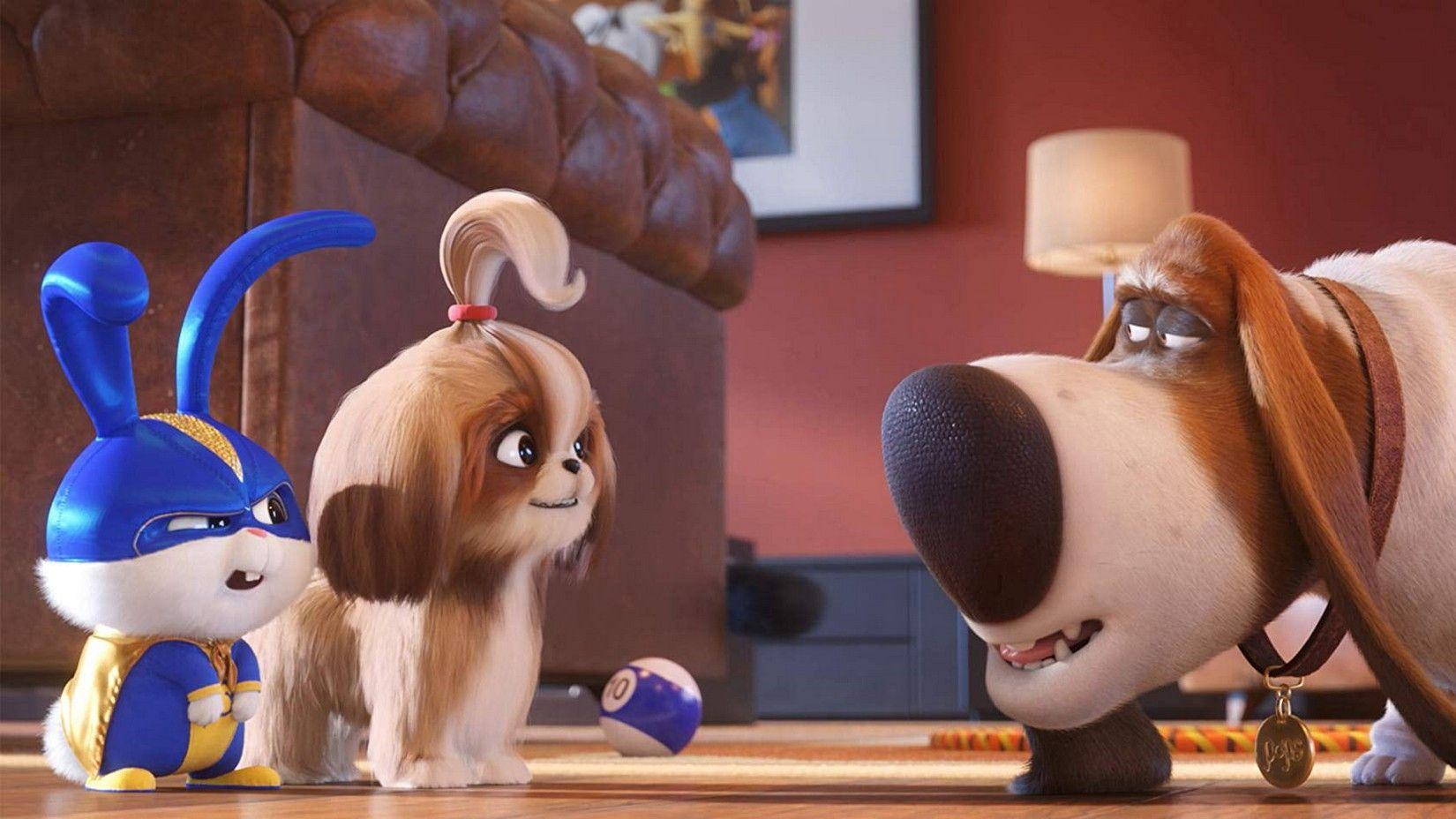 Mascotas 2 Pelicula Completa En Espanol Latino Aquipelis Secret Life Of Pets Secret Life Spring Movie