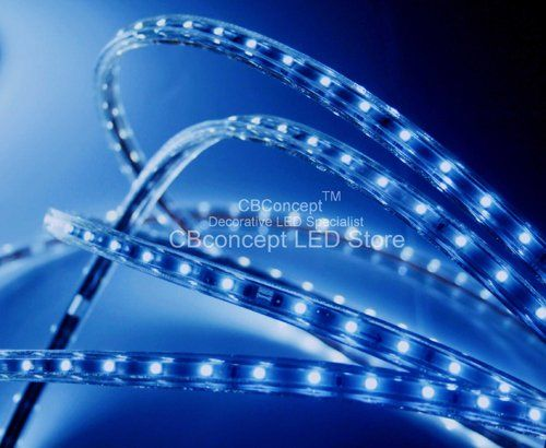 Cbconcept 120vsmd3528 20m B 65 Feet Blue 120 Volt Led Smd3528 Flexible Flat Led Strip Rope Light Chri Christmas Lighting Outdoor Rope Lights Ceiling Lights