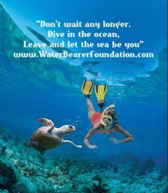 marine biology quotes Marine Biology Marine biology