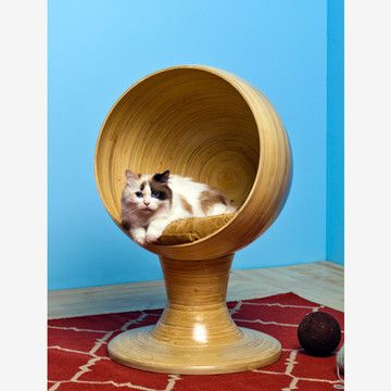 Our cats would love this!