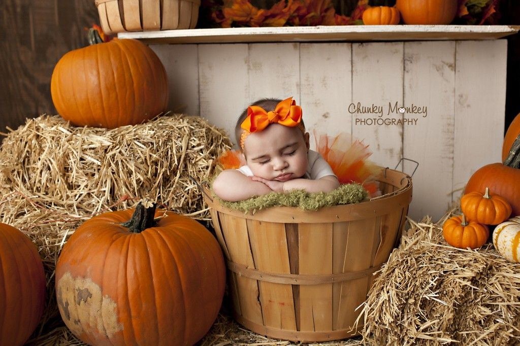 pumpkin patch pictures halloween pictures baby halloween photos fort worth newborn baby photographer http - Halloween In Fort Worth