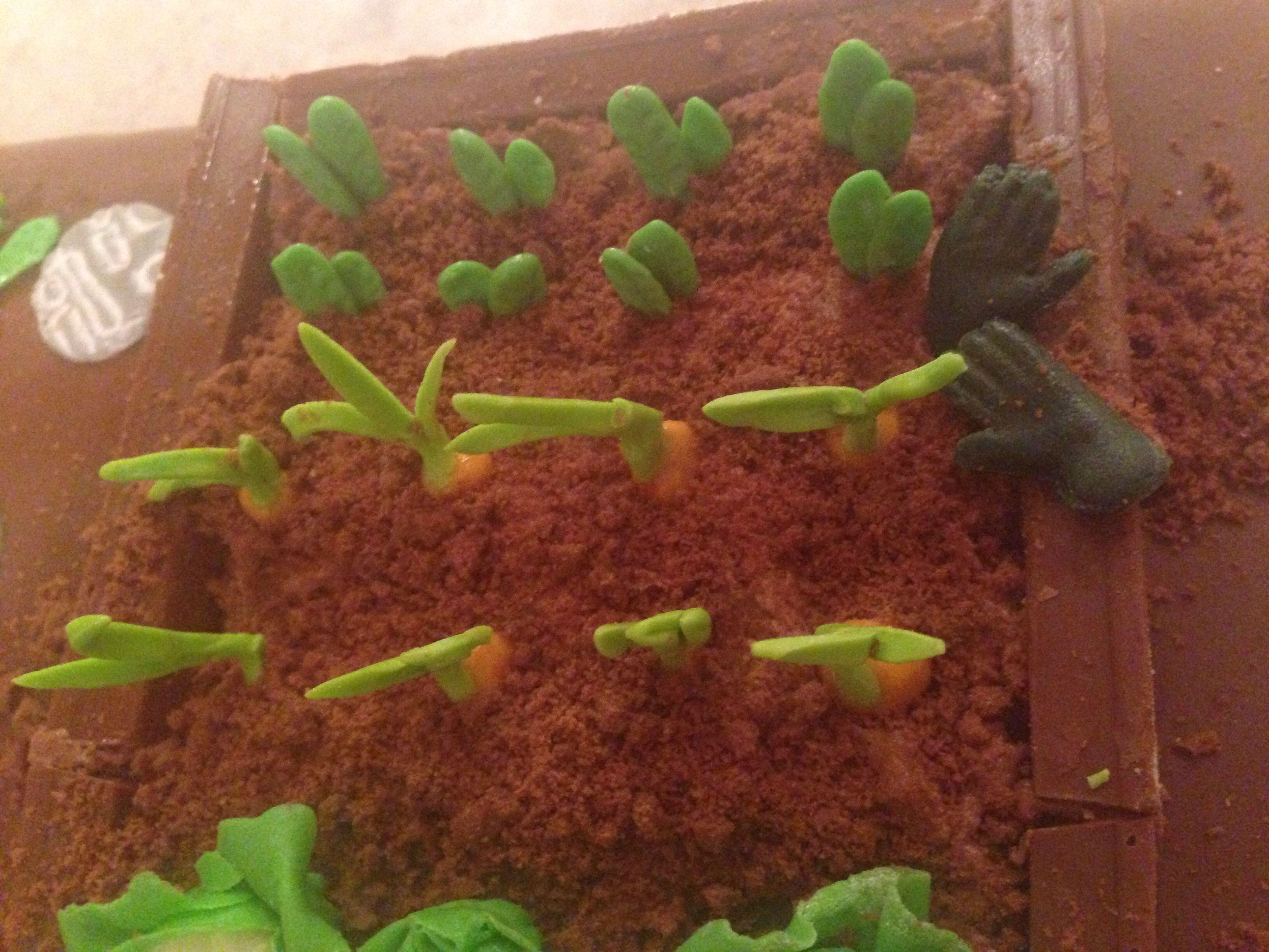 My fondant vegetables and fondant gardening gloves | My cakes ...
