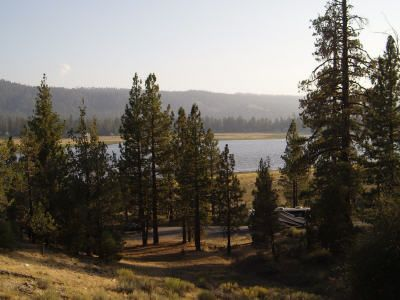 Big Bear Dog Friendly Camping