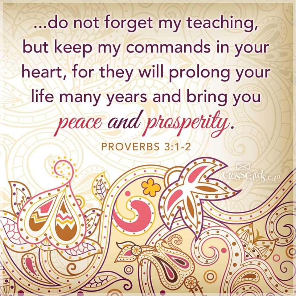 """Book Of Proverbs Quotes: """"Do Not Forget My Teaching, But Keep My Commands In Your"""