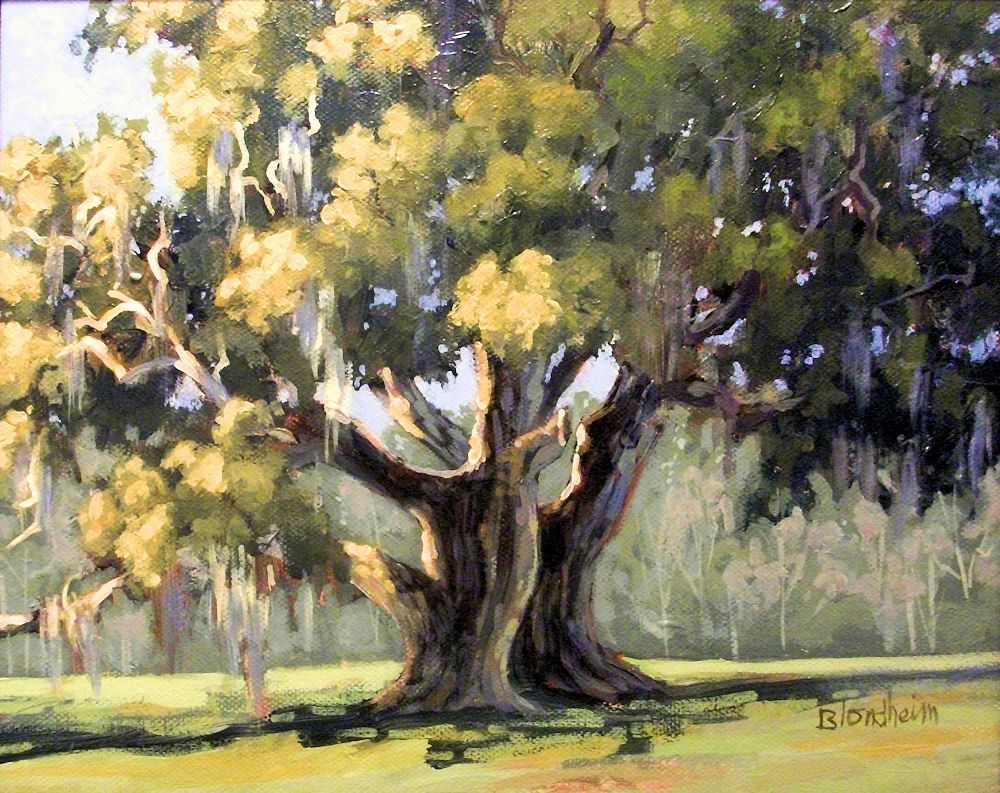 A Study Of The Cellon Oak In Alachua County Oak Tree Drawings Tree Painting Watercolor Trees