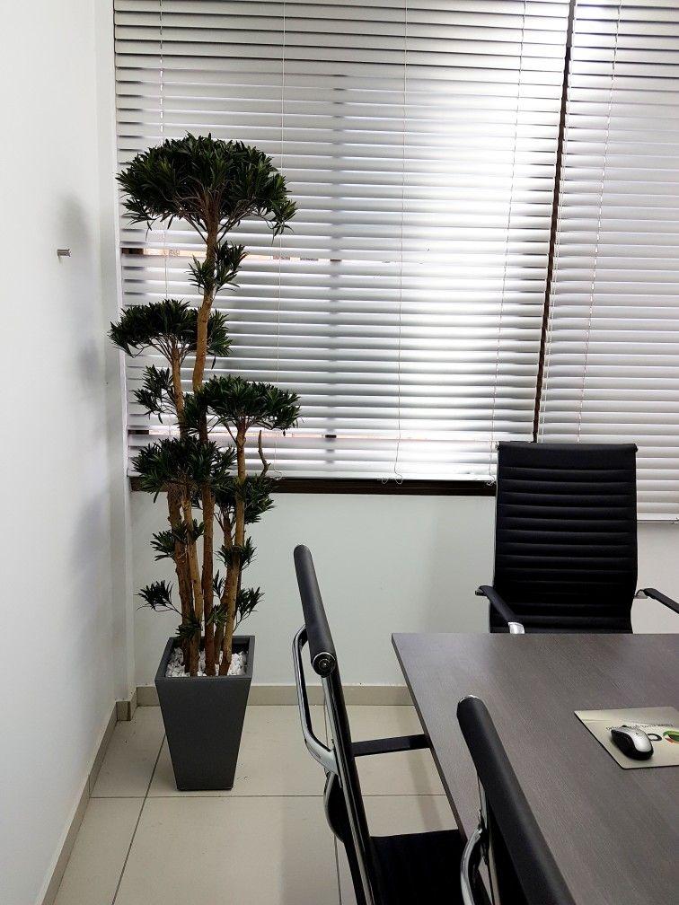 Office Decorations, Artificial Plants, Fake Plants