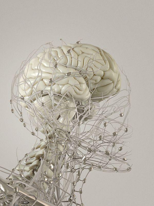 5 descubrimientos psicológicos impresionantes | Pinterest ...