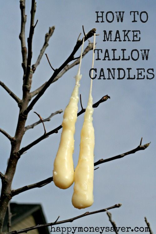 This blogger shows you How to Make Tallow Candles from start to finish. Making Tallow Candles is great to know for emergency preparedness! happymoneysaver.com