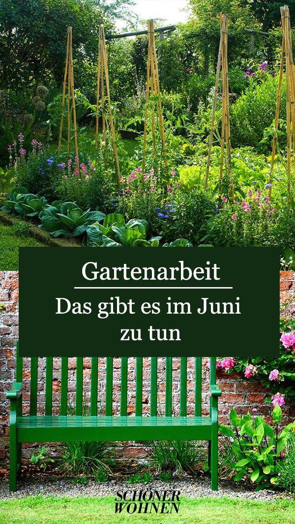 Gartenarbeit im Juni