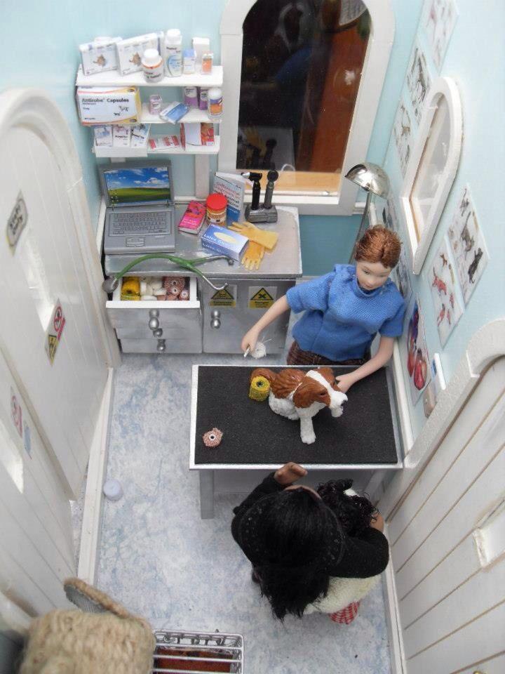 Vet's Office : Dolls House Emporium