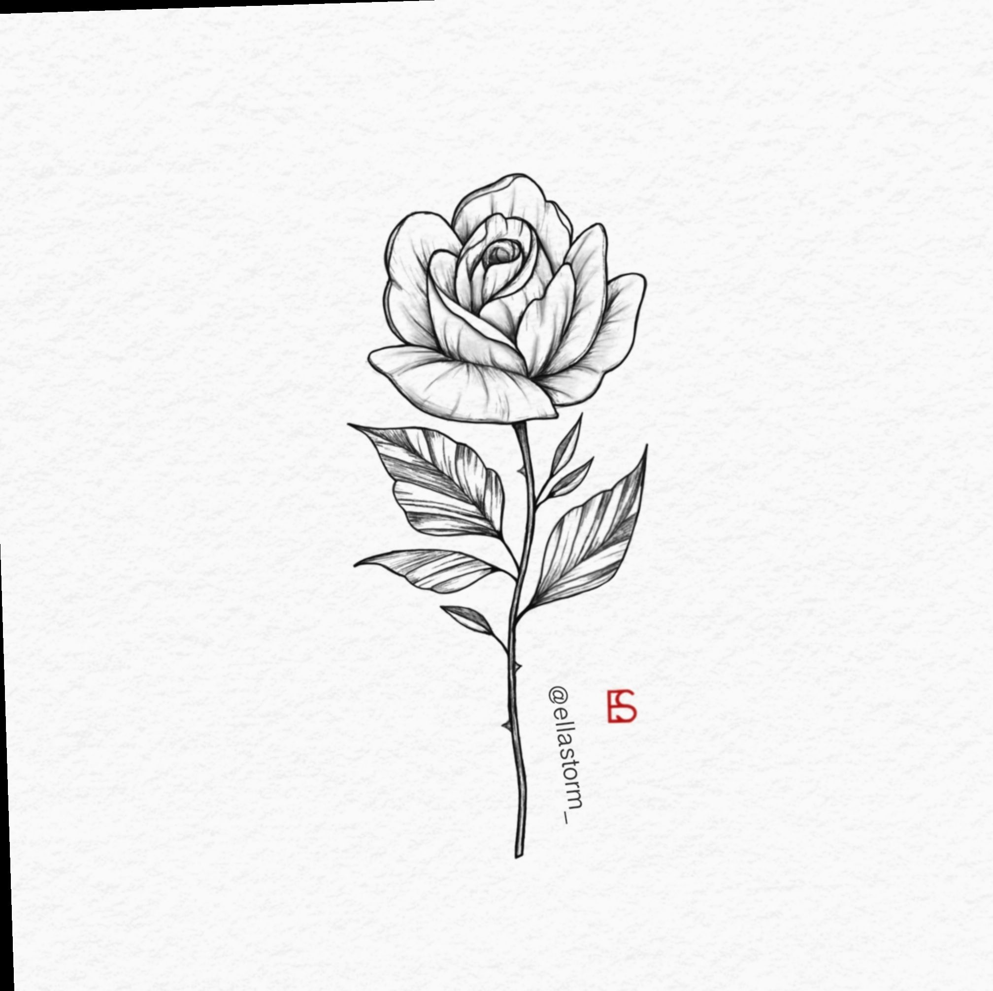 Rose Tattoo On A Back Left Arm Above Elbow 2