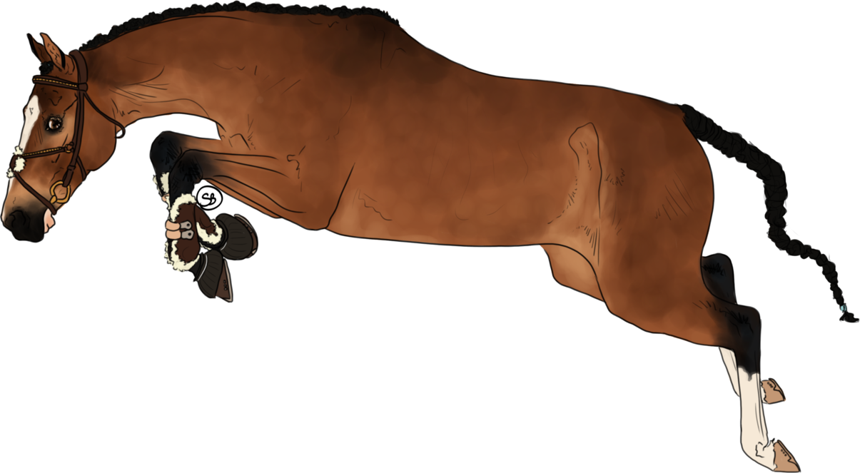 403 Forbidden Horse Drawings Horse Animation Horses [ 663 x 1205 Pixel ]