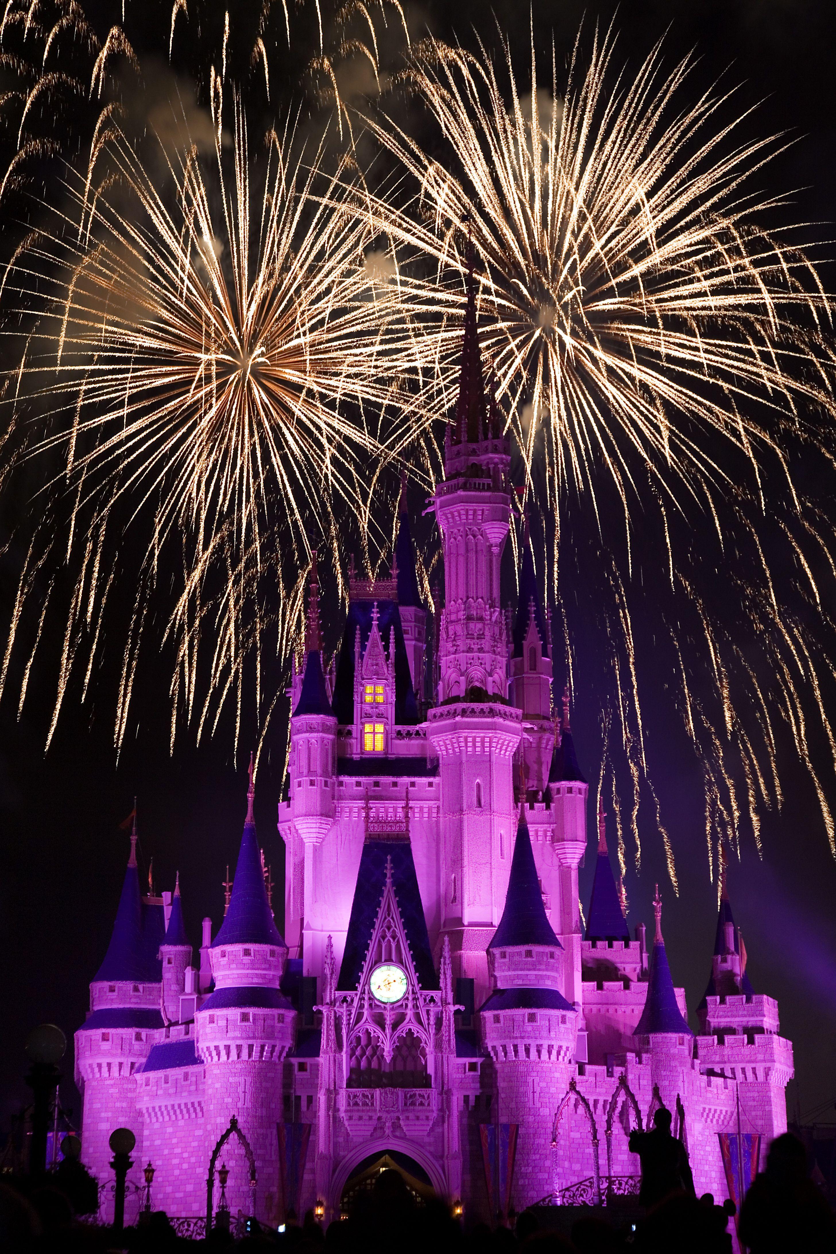 Pin By Debra Gifford On Fireworks Disney Disney World Florida