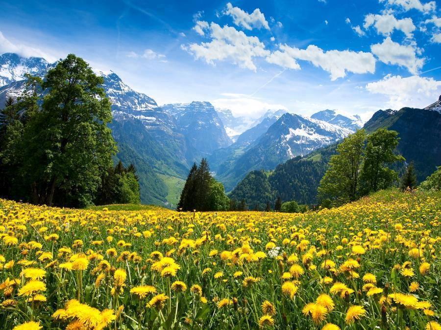 Warisan Dunia Unesco Dalam Paket Tour Swiss Cheria Selalu Alam Yang Indah Pemandangan Pemandangan Anime