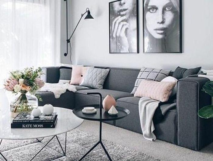 Déco salon gris - 88 super idées pleines de charme | Salons, Living ...