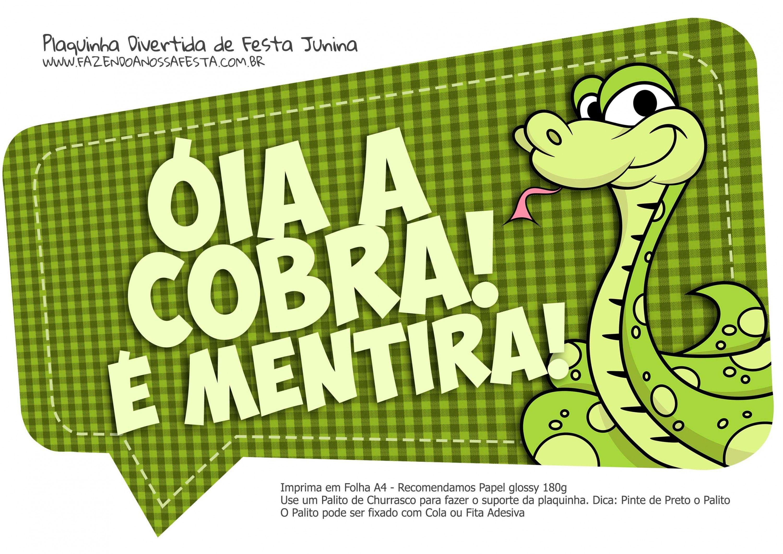 Plaquinha Divertida Festa Junina Oia A Cobra Festa Junina June
