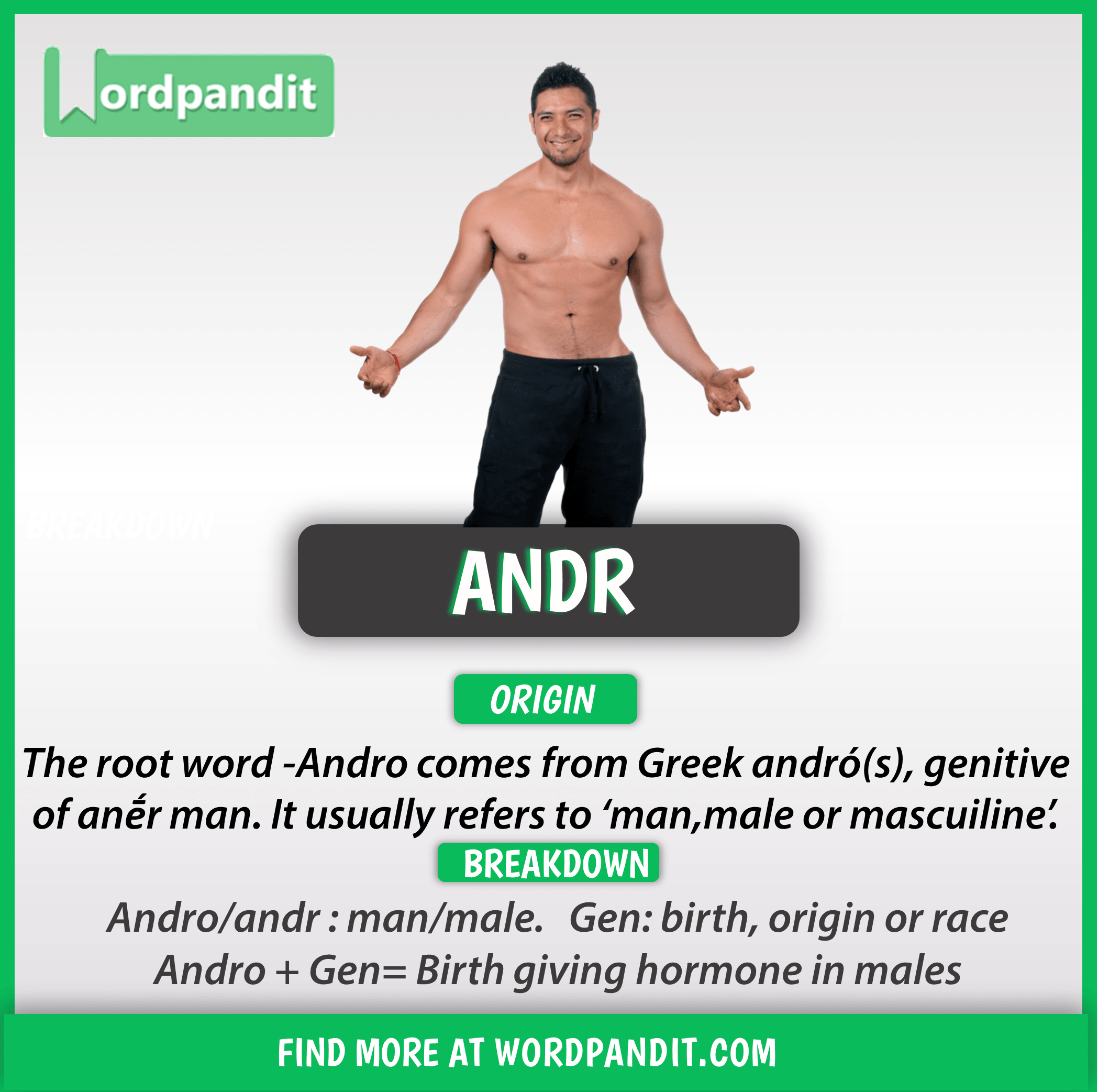 An Arm And A Leg Idiom Meaning In Hindi Know About Andr Root Word And Words Based On This Root Andr Root Words Words English Words