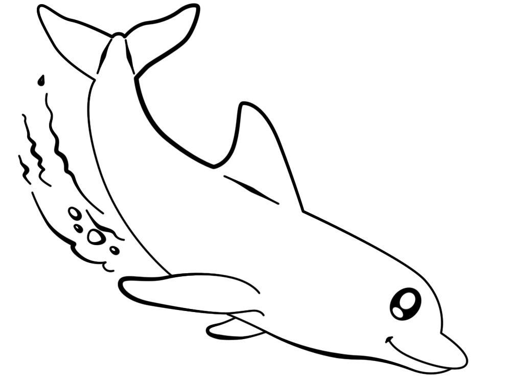 Dibujos Para Colorear Delfines Imprimir Gratis Delfines Para