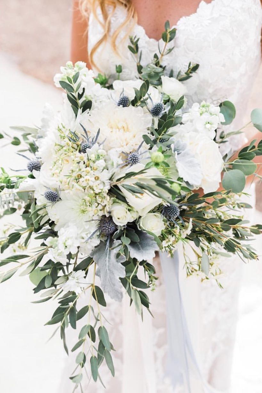 A Rustic Romantic Bouquet Of White Dahlias Wax Flower White Stock Blue Thistle Romantic Wedding Flowers Bouquet White Roses Wedding White Wedding Flowers