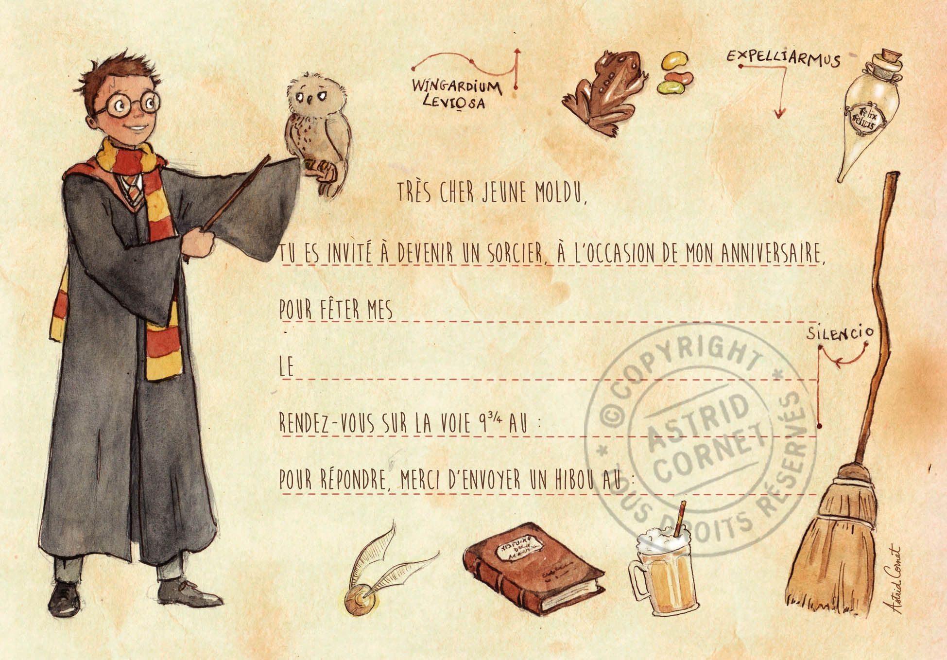 Epingle Sur Mon Anniversaire Harry Potter