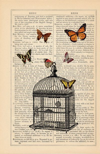 Original De Impresión de Arte En Antiguo Diccionario Libro página Aves Y Flores De Decoración De Pared.