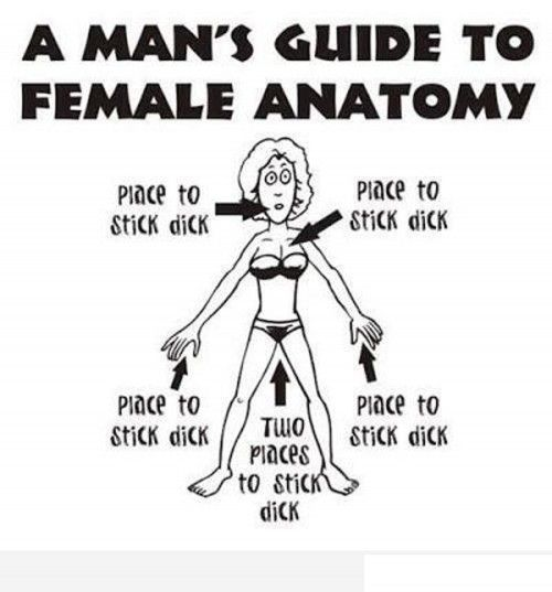 Men Vs Women Funny Quotes: A Mans Guide To Female Anatomy!!