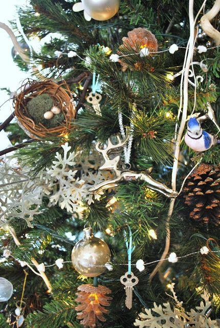 Sophia's - nests in the tree