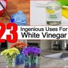 23 Uses For White Vinegar