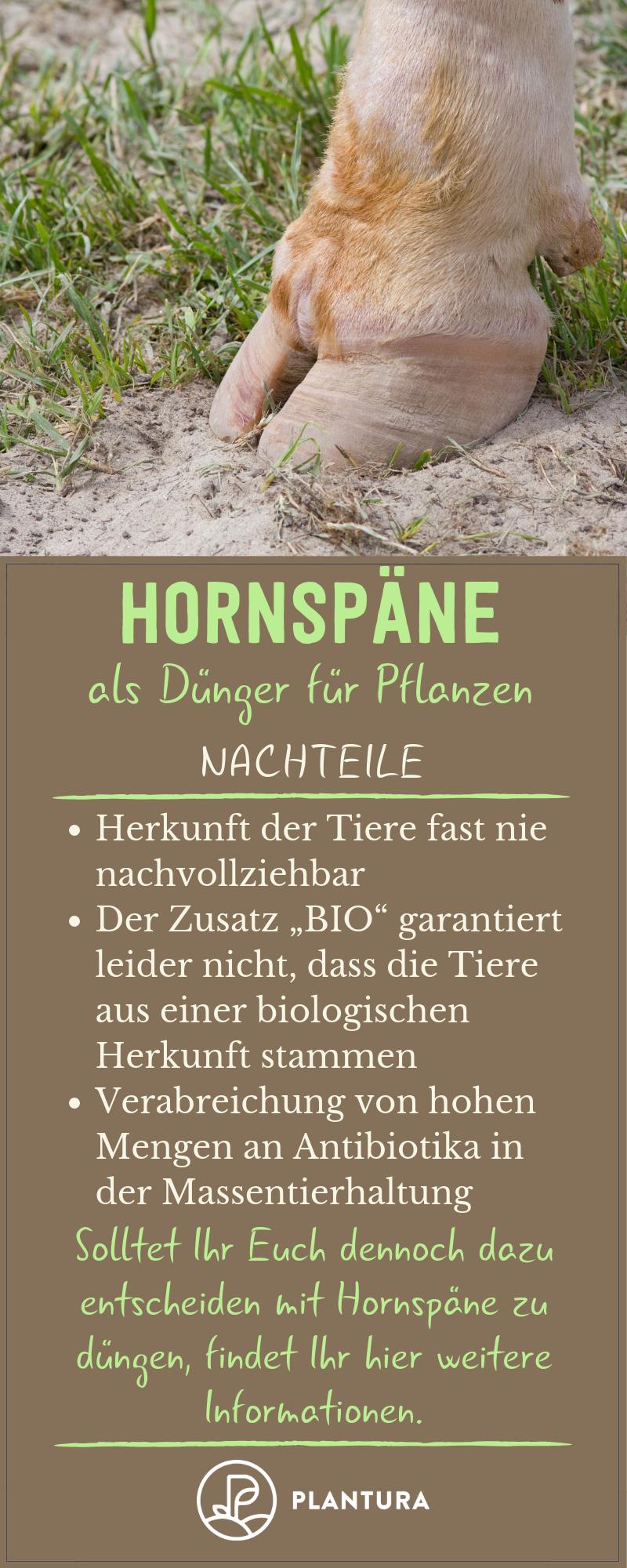 Hornspane Anwendung Wirkweise Als Dunger Plantura Garten Umgraben Pflanzen Gartendunger