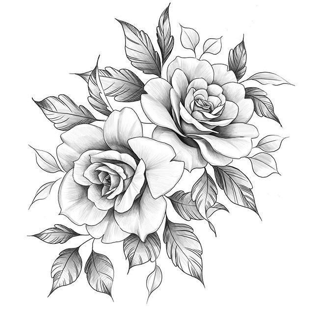 Sadik Erarslan Serarslan Kaligrafi Instagram Fotograflari Ve Videolari Rose Tattoo Sleeve Rose Drawing Tattoo Rose Tattoos