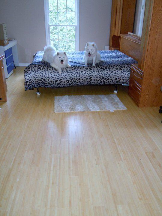 Horizontal Natural Bamboo Flooring By Simplefloors
