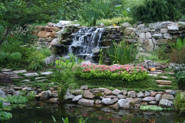 Architecture small pond and waterfall small pond backyard for Koi pond plant ideas