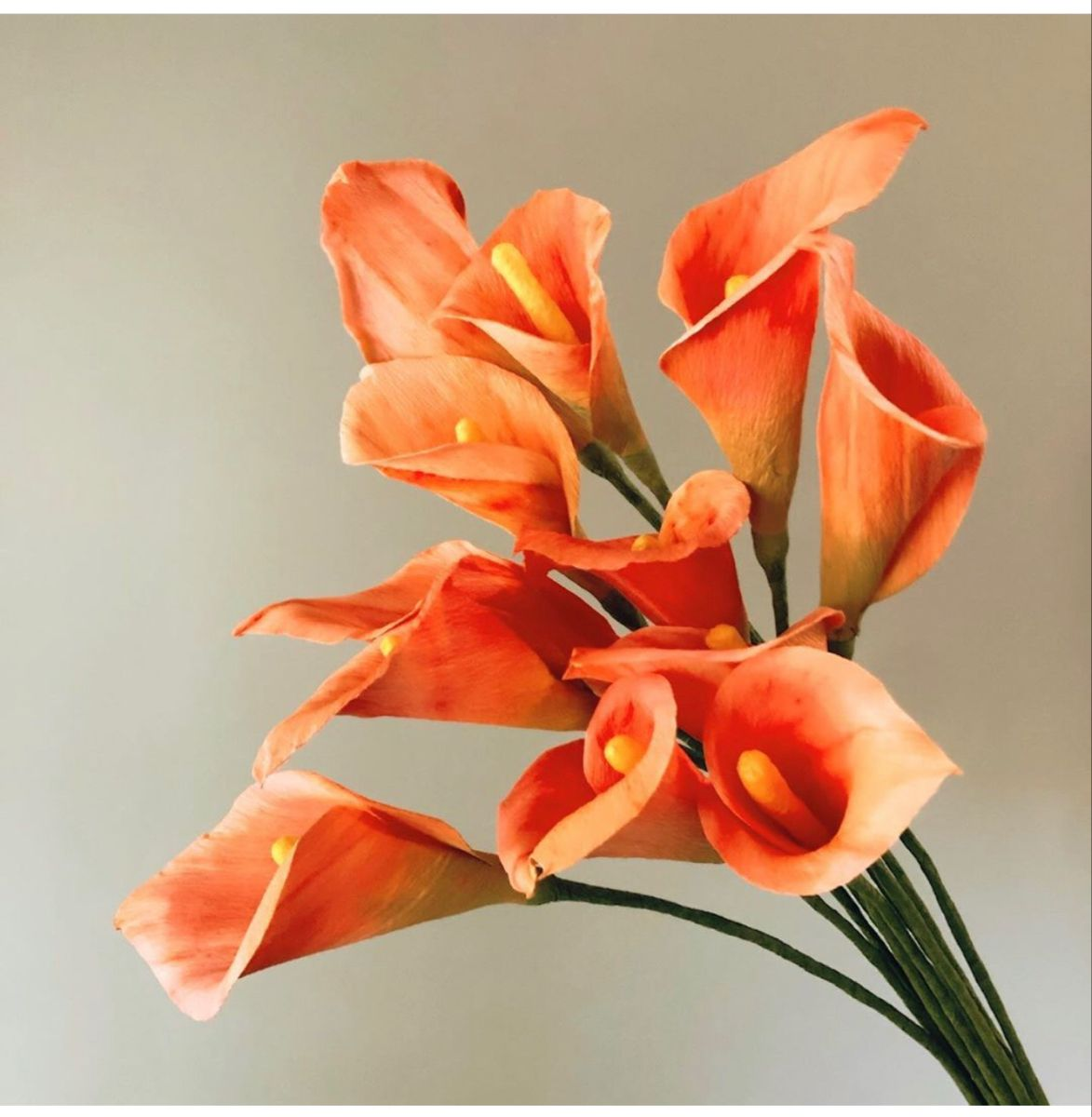 Callalily In 2020 Flowers Online Calla Lily Buy Flowers Online