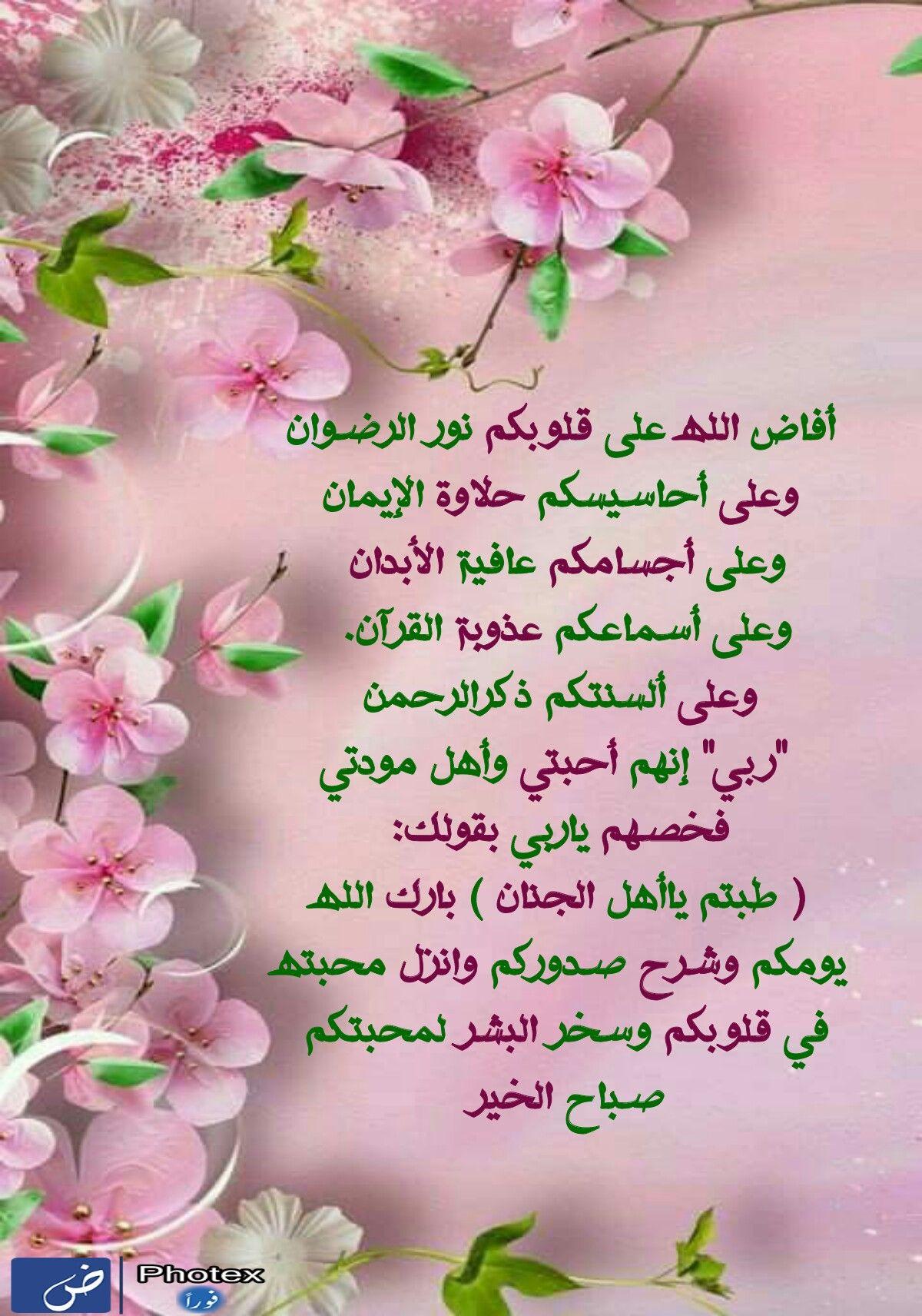 صباح الخيرات Morning Images Romantic Love Quotes Morning Wish