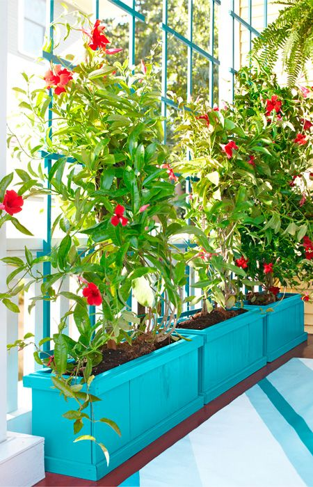 Rely on plants for privacy this planter box and trellis for Ikea barso trellis