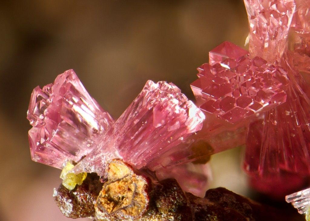 Image result for pink raw crystals