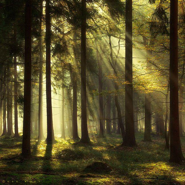 Light is Destiny by J-W v. E. on 500px