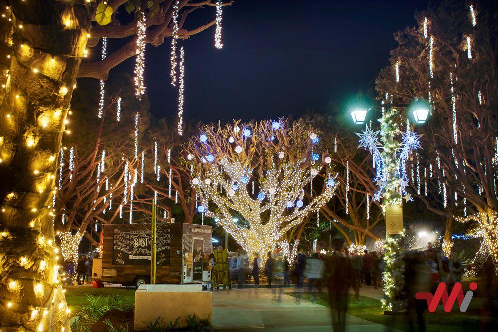 Christmas Lighting Installation Burton Chace Park Christmas Lighting Light Installation Christmas Lights