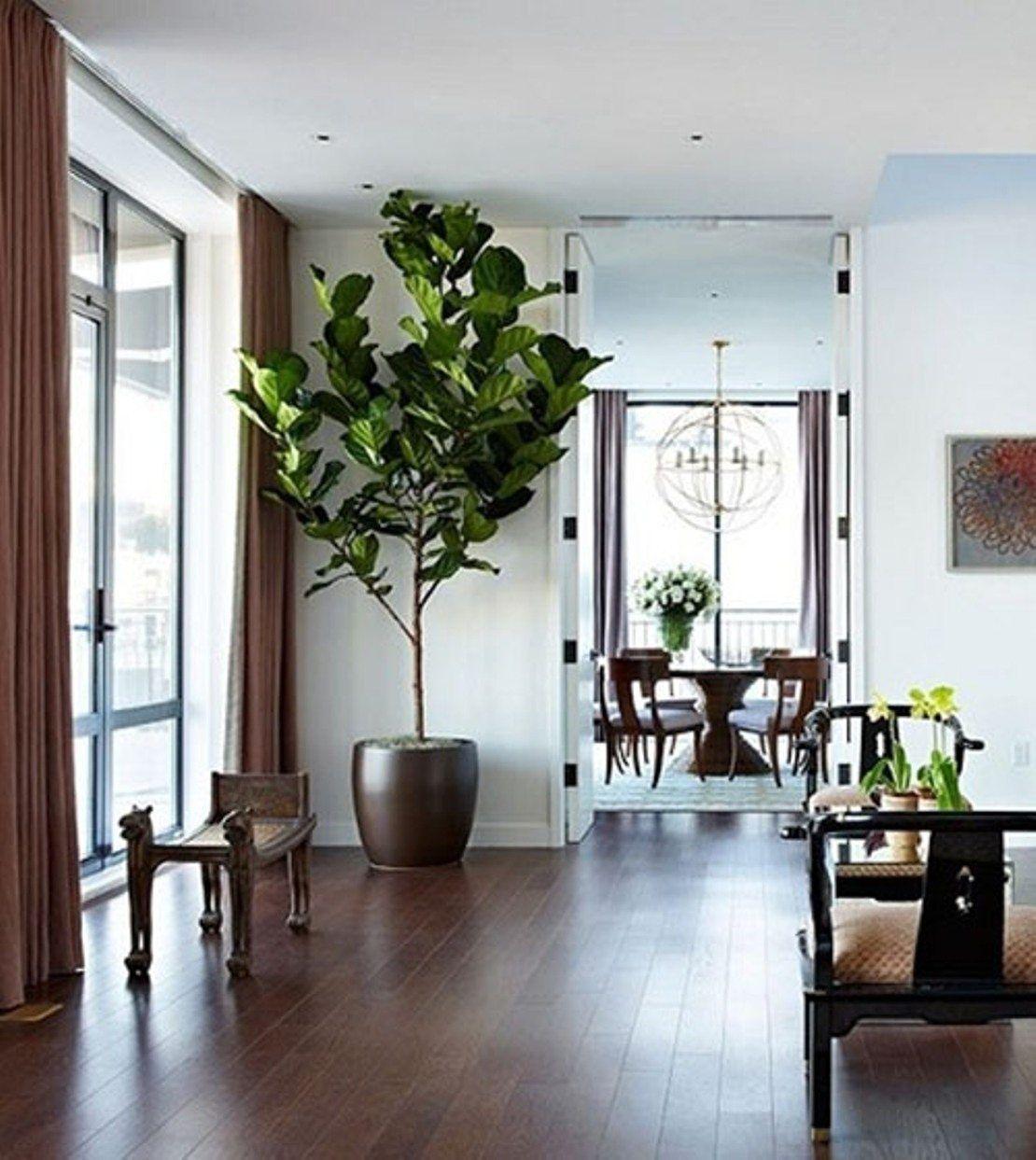 Watering Your Beautiful House Plants House Plants Indoor Home Interior Plants