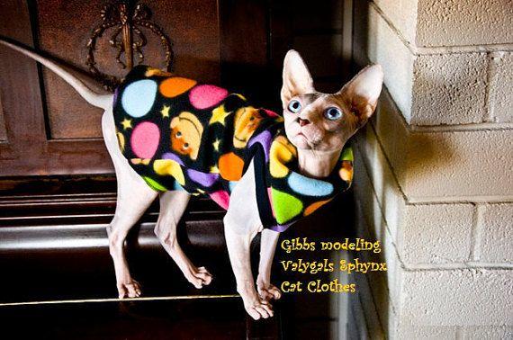 Tween MYSTERY PIK - Sphynx Cat Clothes | sphynx cat ❤ | Pinterest ...