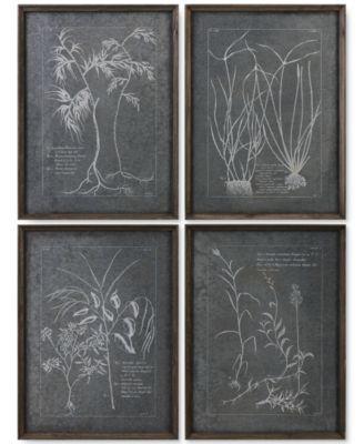 Uttermost Root Study 4-Pc. Print Wall Art | macys.com | Lititz ...