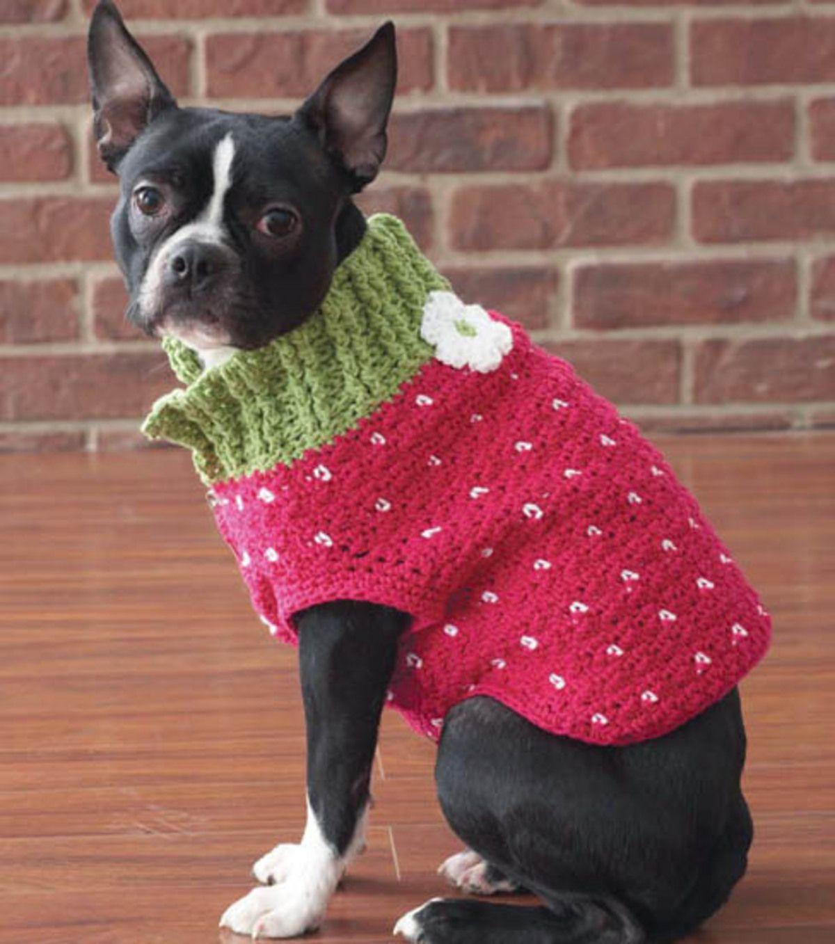 free pattern...Strawberry SweaterStrawberry Sweater | Mascotas ...