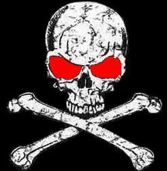 Google Image Result for http://www.pirateship.com/pirate-ship-com-2.jpg