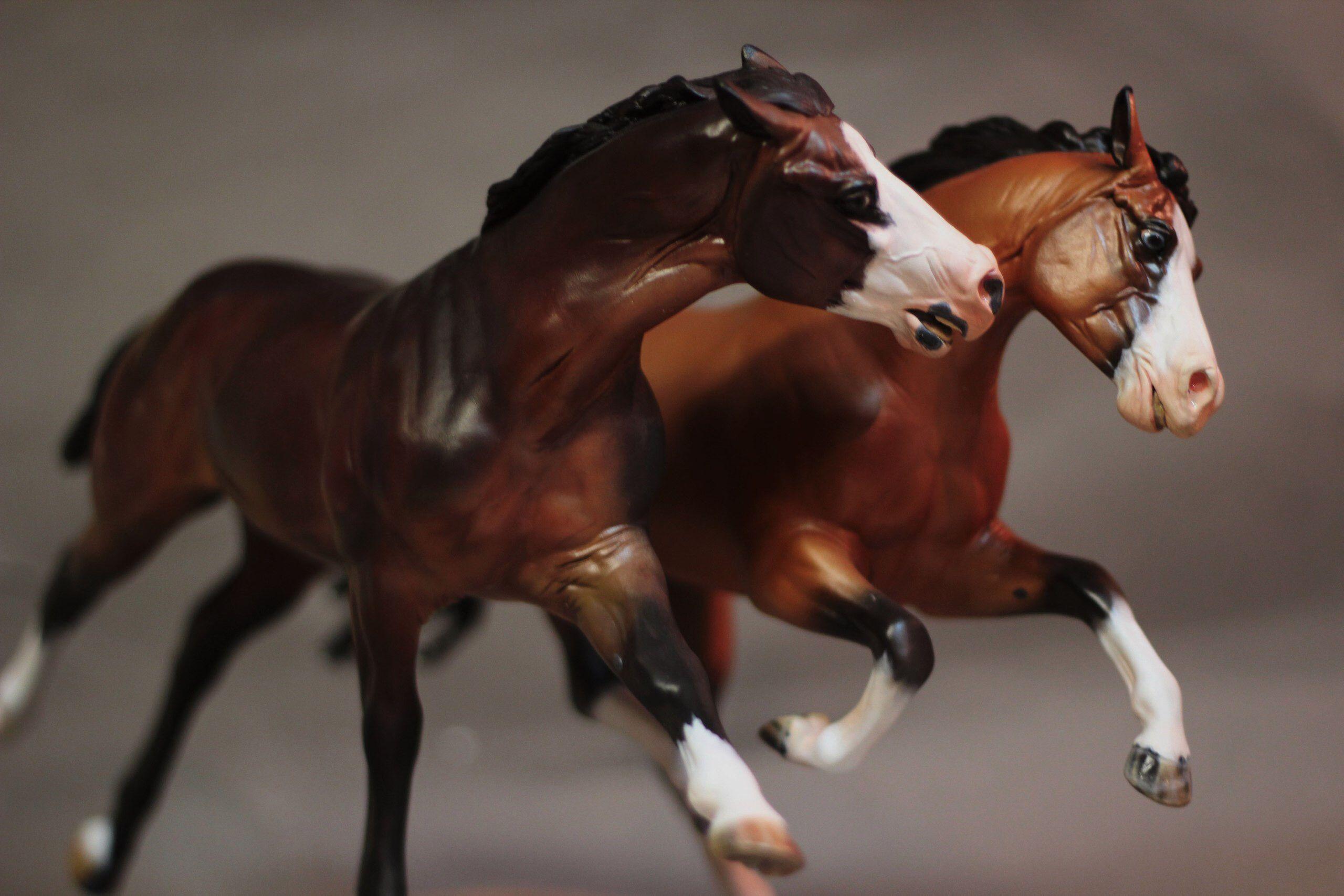 картинки лошадей брейер на природе так очень возбуждающе