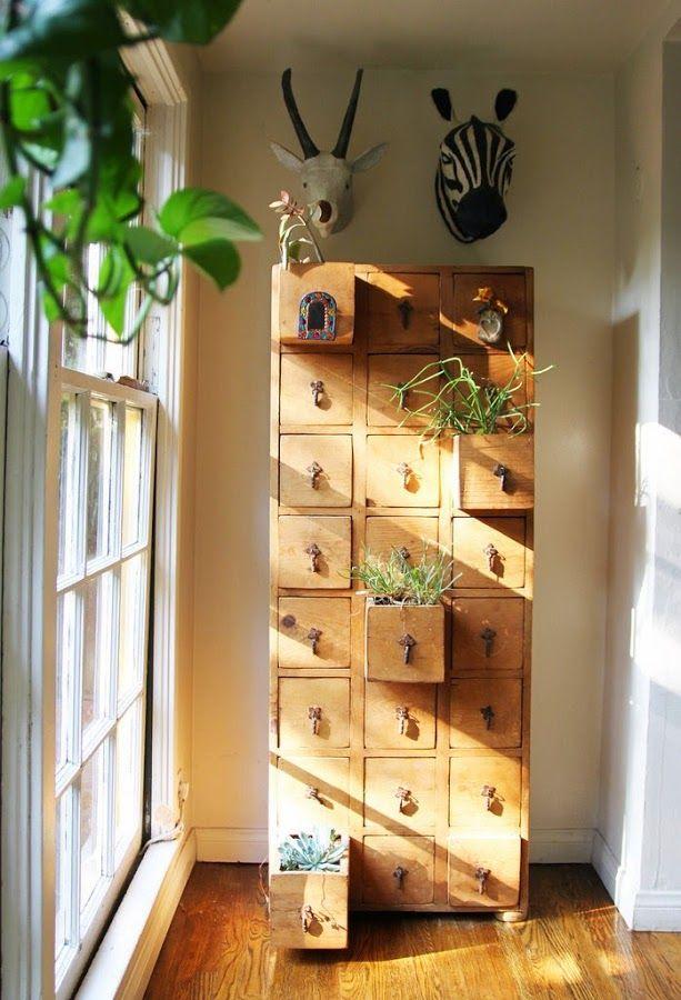 50 imágenes decoración con plantas de interior y jardines preciosos - decoracion de interiores con plantas